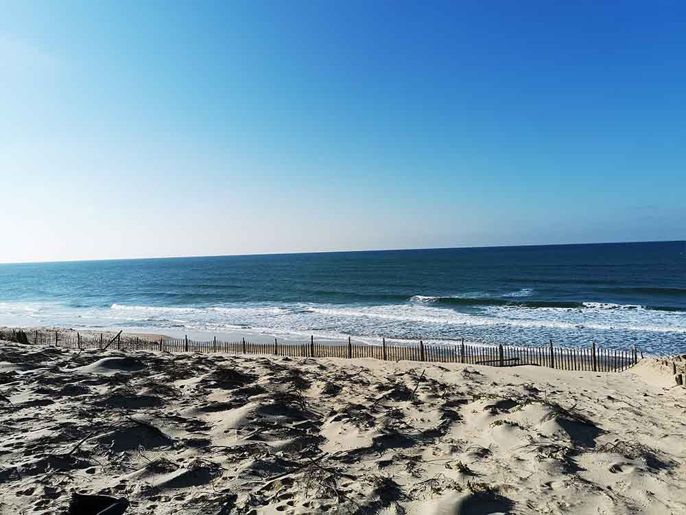 Biscarosse Landes ocean plage